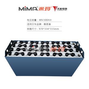 【天能叉车蓄电池】搬易通48V叉车电瓶组48V300蓄电池