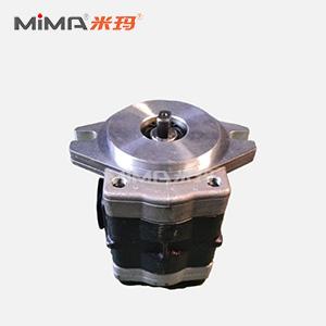 搬易通齿轮泵 DSG05C16F9H9-R005C